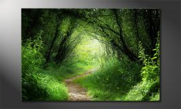 'Way into the Forest' Obraz