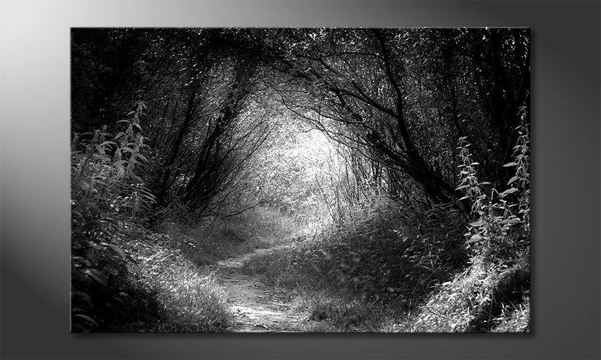Ładne malowanie Way In Deep Forest