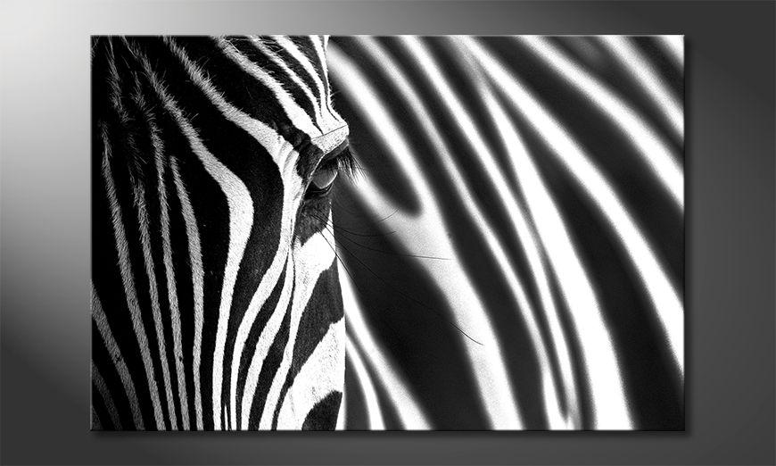 ?adne malowanie Animal Stripes
