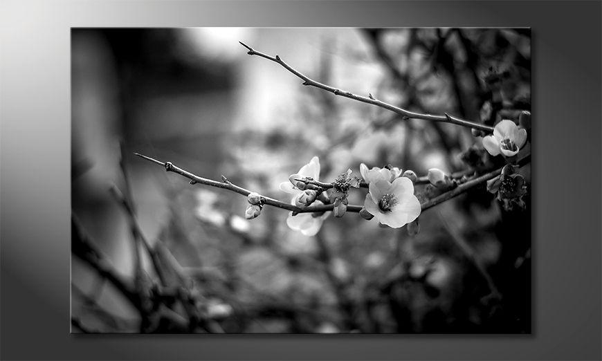 ?adne malowanie Beautiful Blossoms