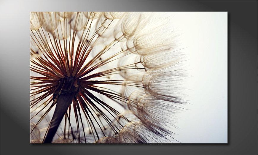 Big Dandelion Obraz