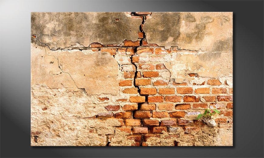 Broken Wall Obraz