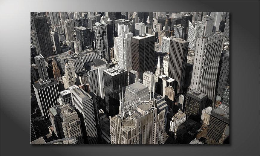 City of Chicago Obraz