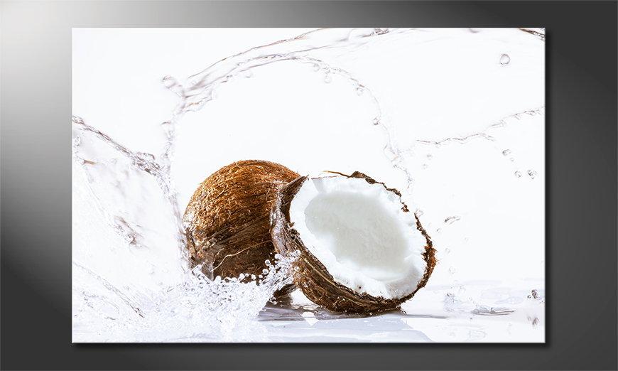 Coconut Obraz