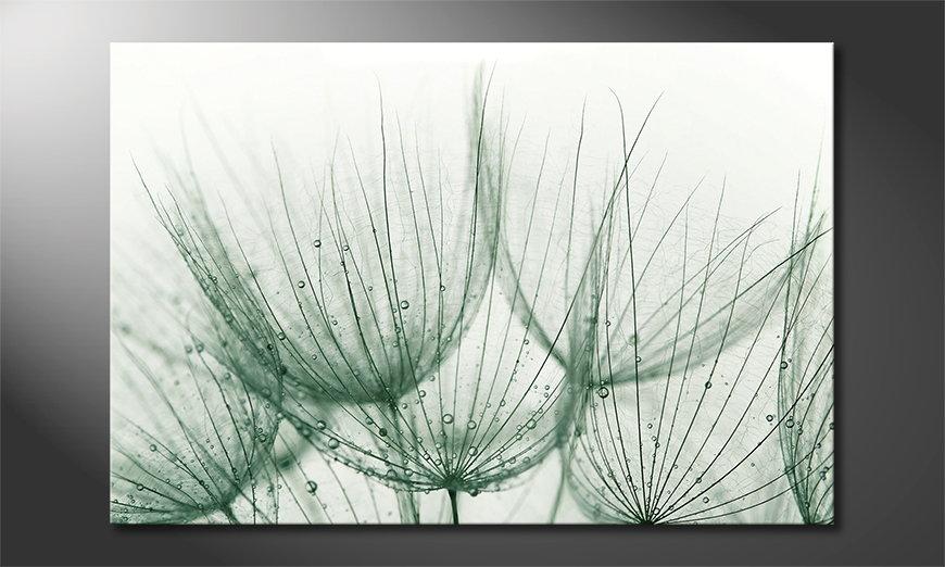 Dandelion Detail Obraz