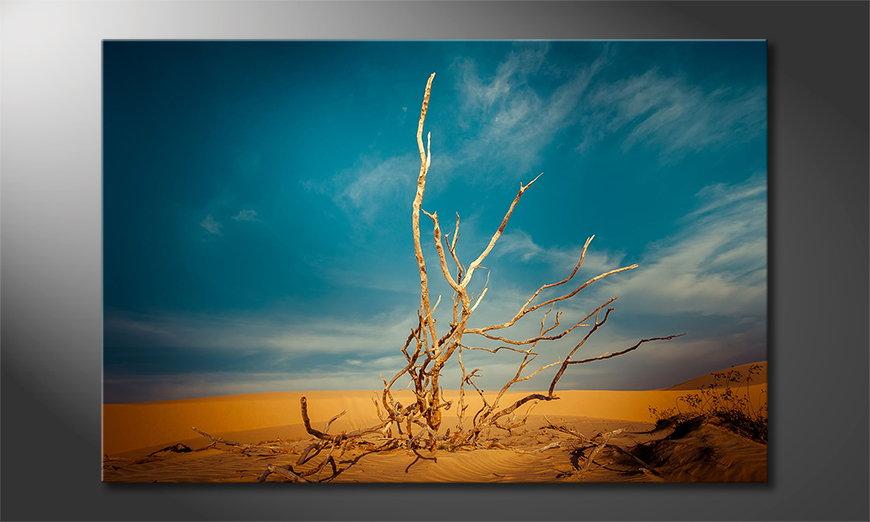 Desert Landscape Obraz