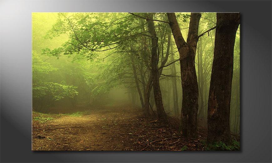 Green Forest Obraz