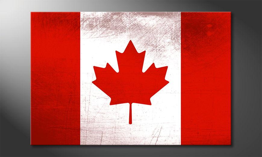 Kanada Obraz