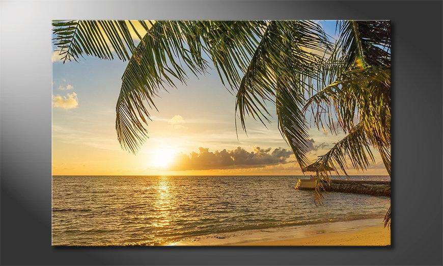 Maledives Obraz