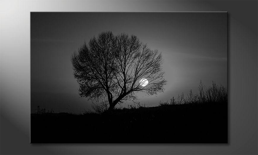 Nowoczesne obraz Sundown