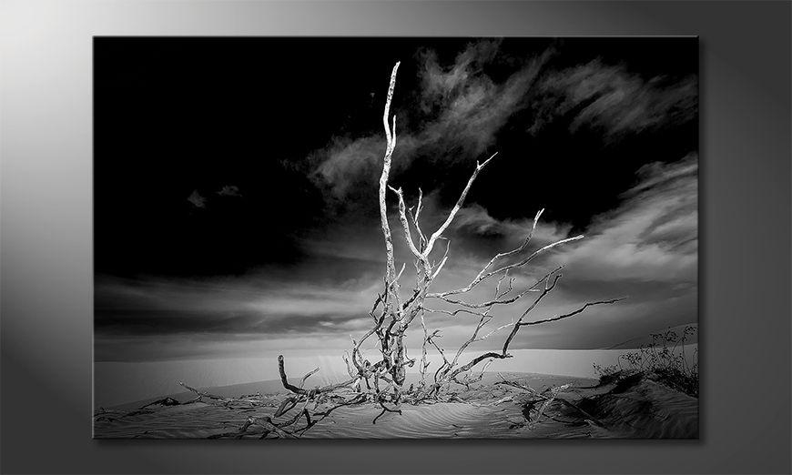Nowoczesne p?ótnie Desert Landscape