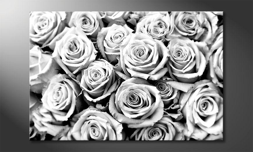 Nowoczesny wystrój Creamy Roses