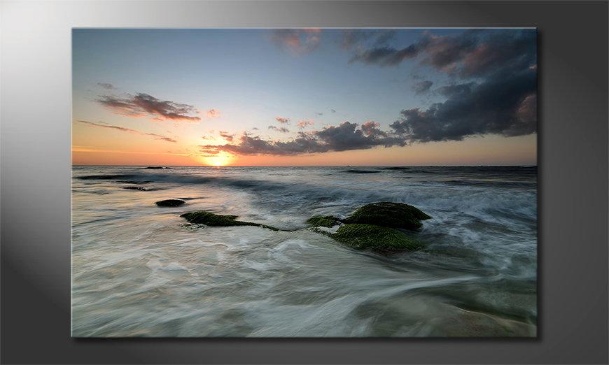 Ocean Sunset Obraz