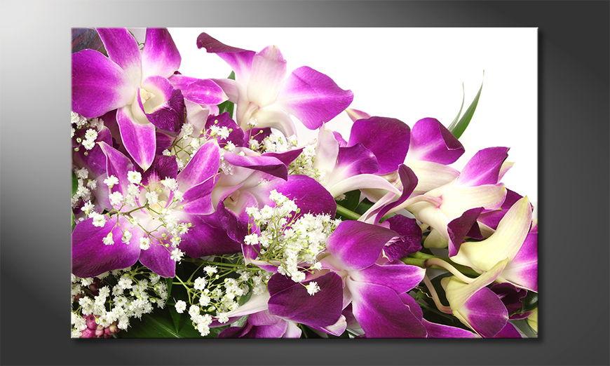Orchid Blossoms Obraz