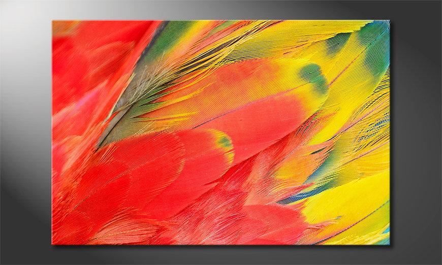 Parrot Feathers Obraz