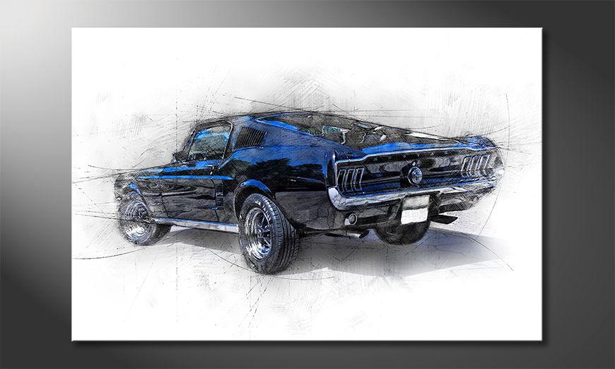 Pure Mustang Obraz
