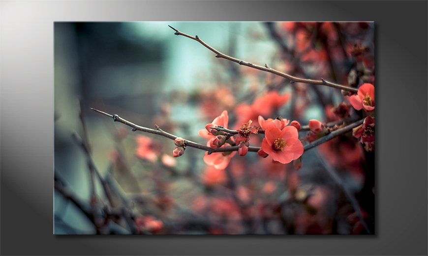 Red-Blossoms-Obraz