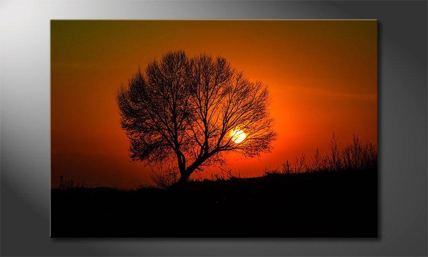 Red Sunset Obraz