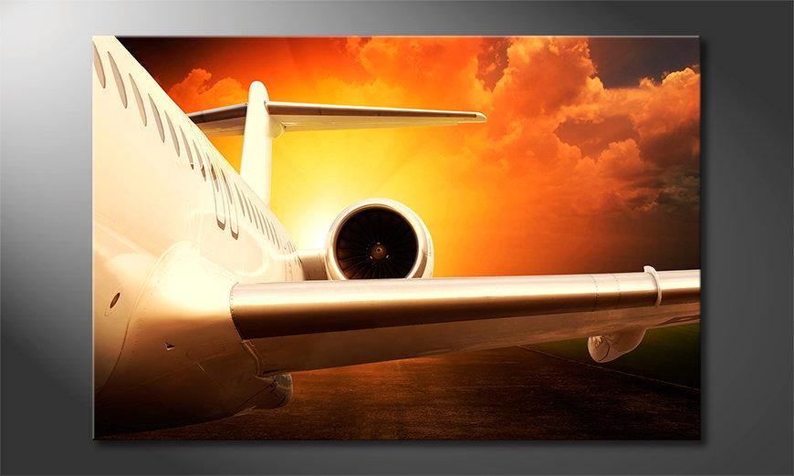 Sunset Flight Obraz
