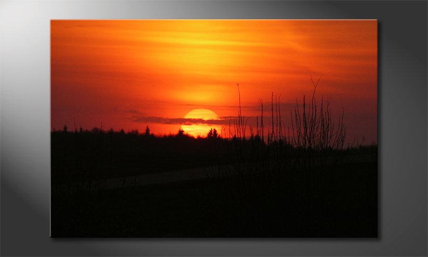 Sunset Sky Obraz