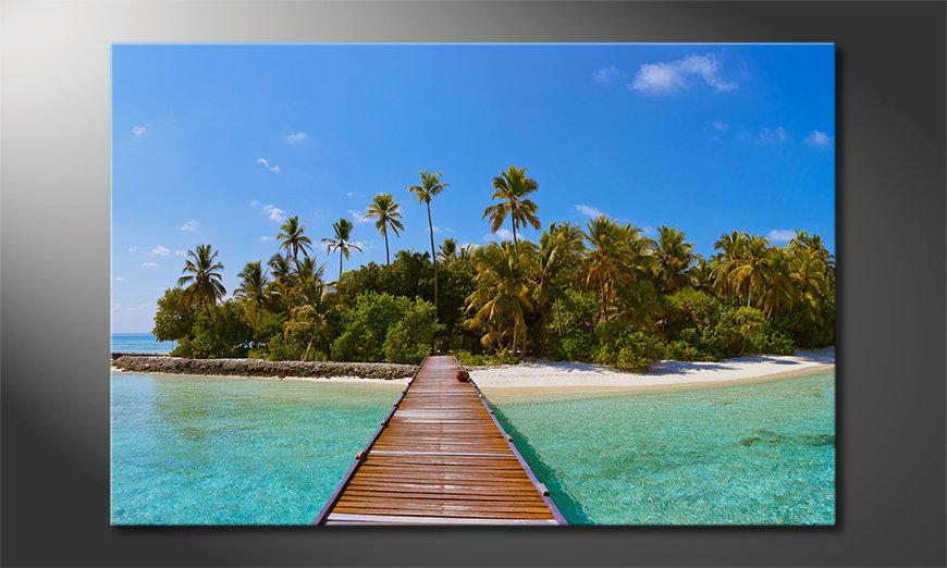 Tropical Way Obraz