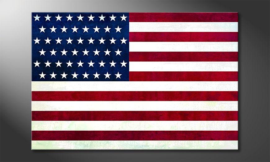 USA Obraz